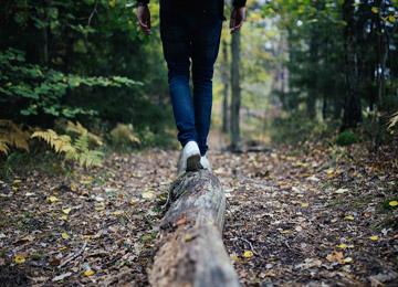 森を歩くミニトレッキングツアー